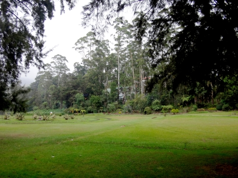 Parc Victoria sous la pluie...